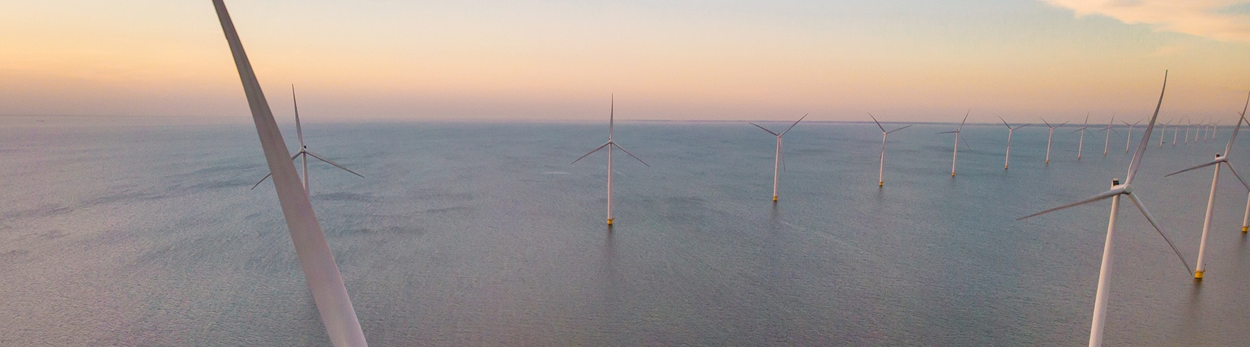 Bottom-fixed offshore wind farm