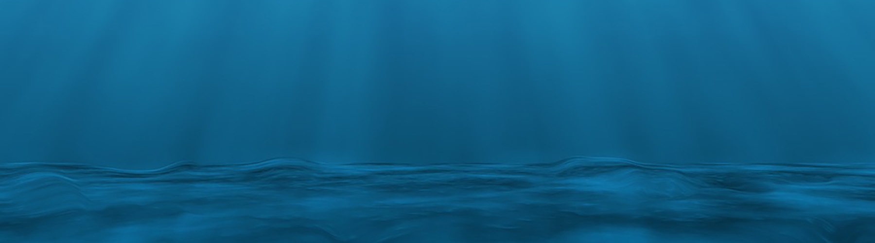 Tribune FEM 2020 - Webinar Dynamique des fonds marins