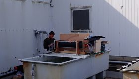 Thermal resistance of biofouling